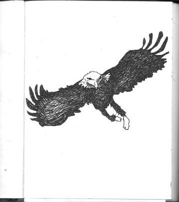 eagle.jpeg