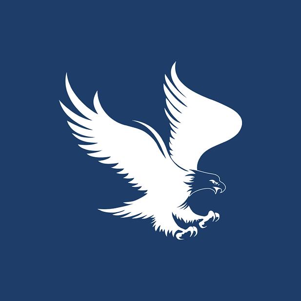 Eagle_landing.png