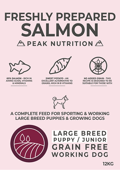 Borders Grain Free Large Breed Puppy Food Salmon & Sweet Potato 12kg