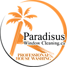 Paradisus Window Cleaning Logo With Palm Tree And Squeegee