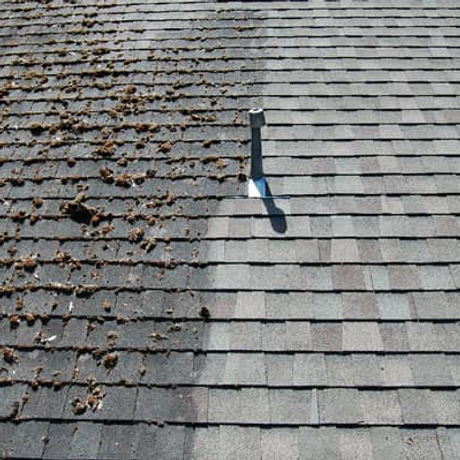 professional roof washing service