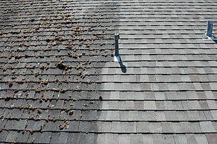 professional_roof_washing_service.jpg