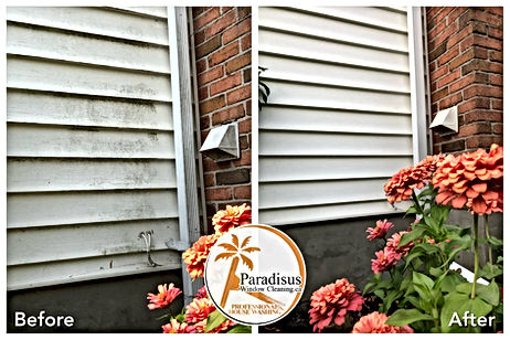 professional siding cleaning before and after photo