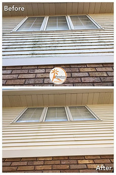 professional_siding_cleaning.jpg