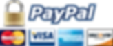 Paypal Payment Gateway Icon