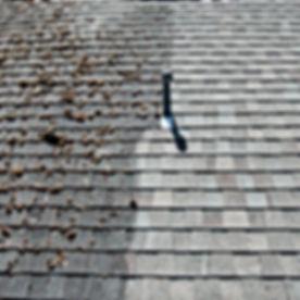 Roof Washing.jpg