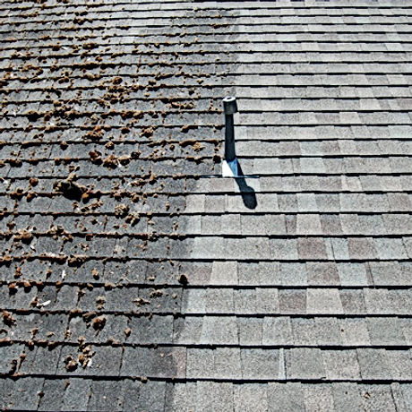 Half Dirty Roof Vs Half Clean Roof