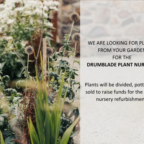 Drumblade plant nursery