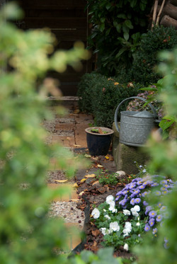 New_Garden_Autumn2011_012.jpg