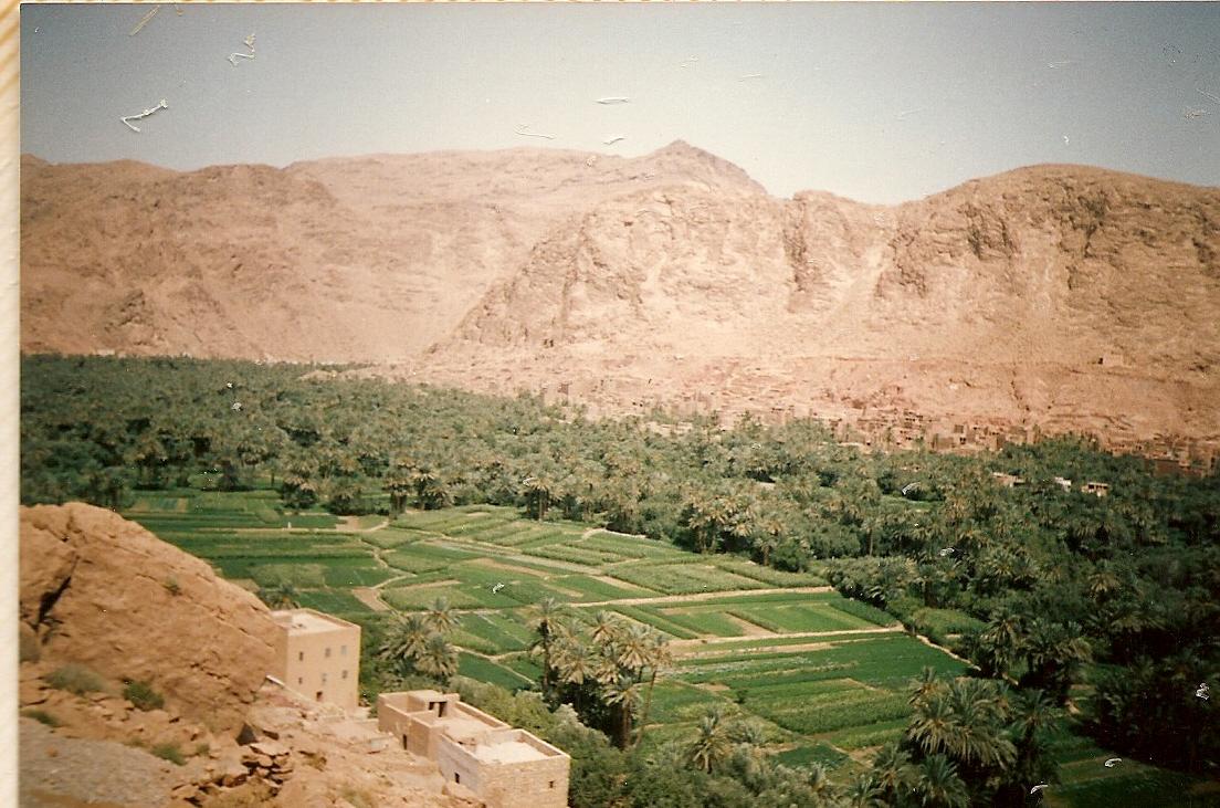 Algeria 1988 (27).jpg