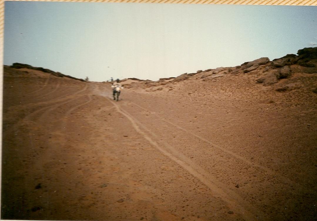 Algeria 1988 (51).jpg