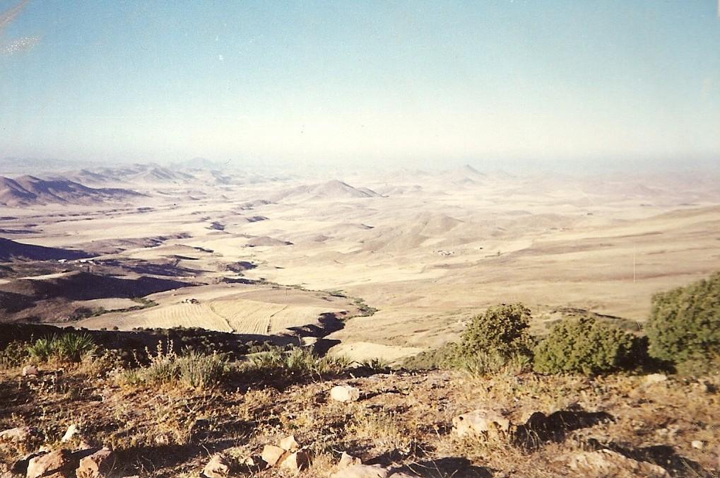 Algeria 1988 (37).jpg