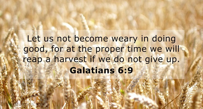 And let us not be weary...