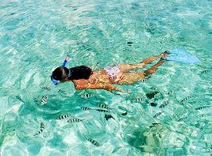Snorkeling in seychelles.jpg