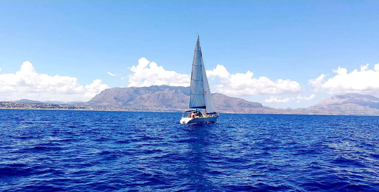 Ander Sailing zingaro.jpg