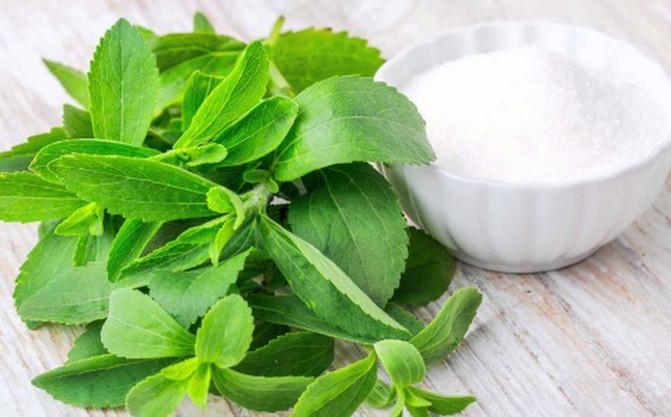 Las dulces propiedades del Stevia