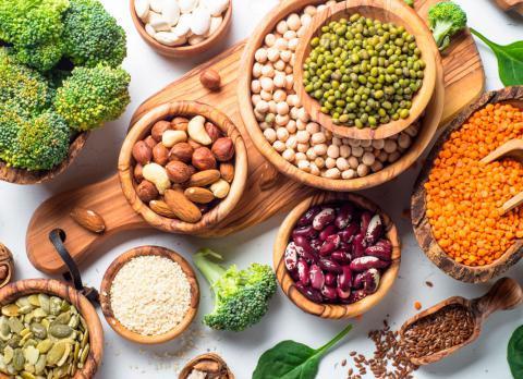 ¿Qué y cuáles son las proteínas de origen vegetal?
