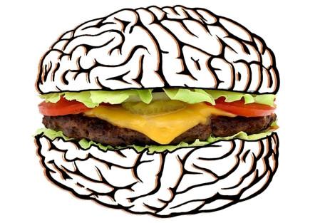 Obesidad y daños neuronales