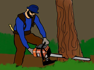 DEFORESTATION: A MAJOR BIODIVERSITY ISSUE