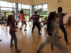 Taekwondo Family Day