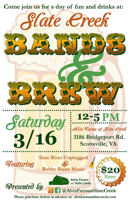 bands and brew flyer.jpg