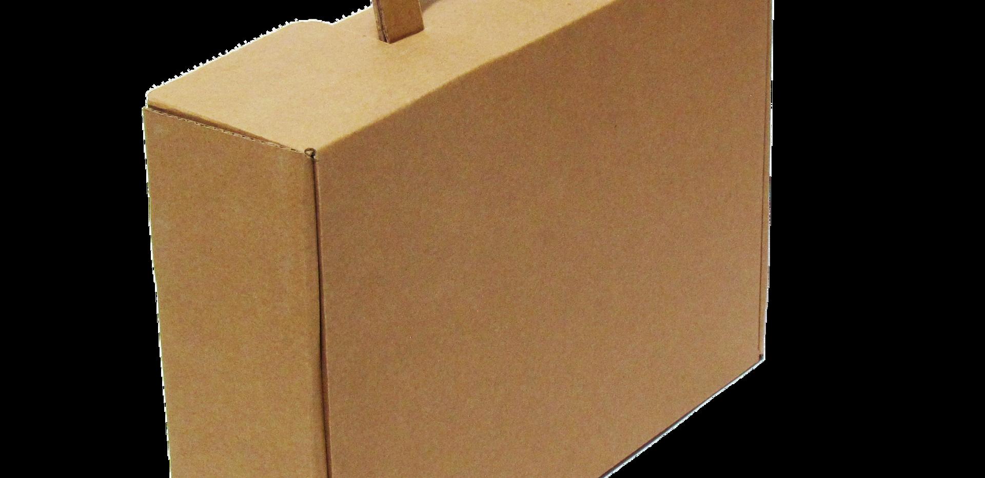 """Maletín  Medidas internas Largo: 32.4 cm. Ancho: 27.4 cm. Altura: 10.0 cm.  Material:  Flauta """"B""""  Linner: -Kraft -Blanco  Con o sin impresión"""