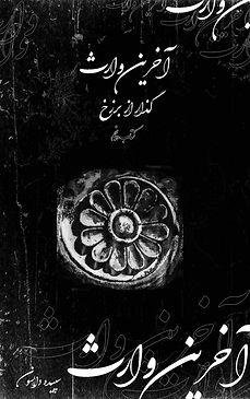 The Last Descendent book 5 - cover.jpg