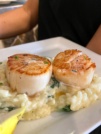 Seared Scallops & Risotto