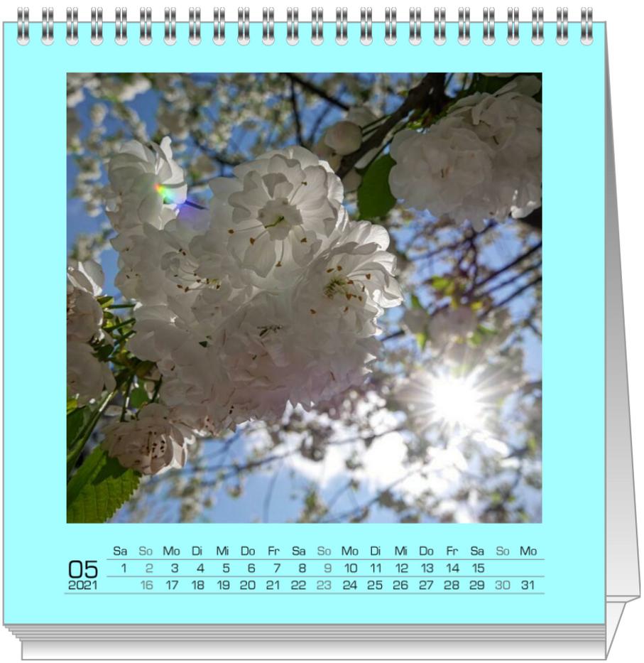 Screenshot 2020-10-05 at 14.31.02.png