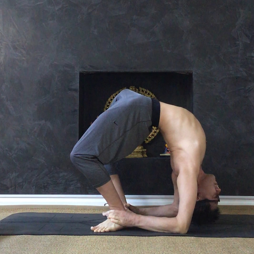 Workshop Hips, Shoulders and Spine with Mark Kan