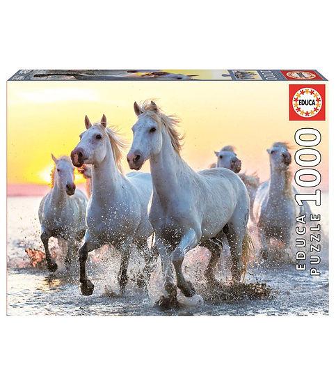 סוסים לבנים בשקיעה