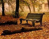 Autumn-wallpaper-autumn-9444937-1280-102