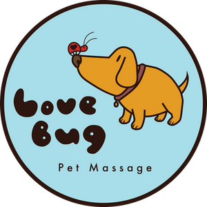 Hello from Love Bug Pet Massage!