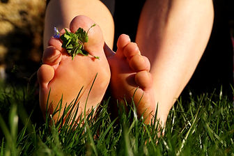 pied dans l'herbe.jpg