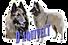 logo_daquivelt2g_edited.png