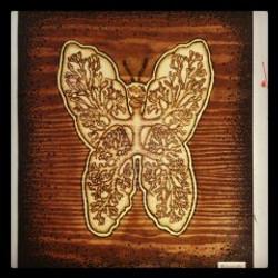 Papillon Poumon