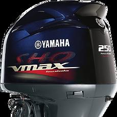 Yamaha v max 250