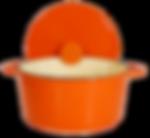 Le Creuset orange stockpot
