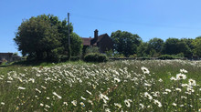 Sussex Farmhouse Self-Catering Holiday