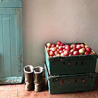 home grown food at Starnash Farmhouse