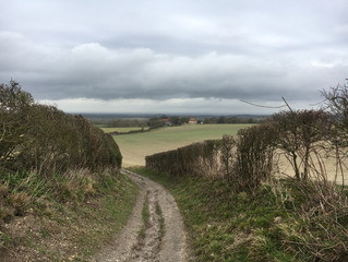 Inspired by the South Downs: An Artistic day to Walk, Eat & Create Prints