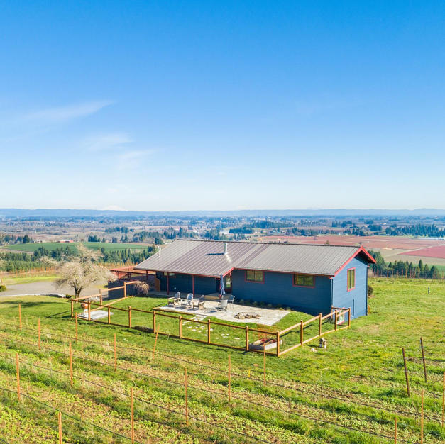 Vineyard Property Sold in Cornelius 2020
