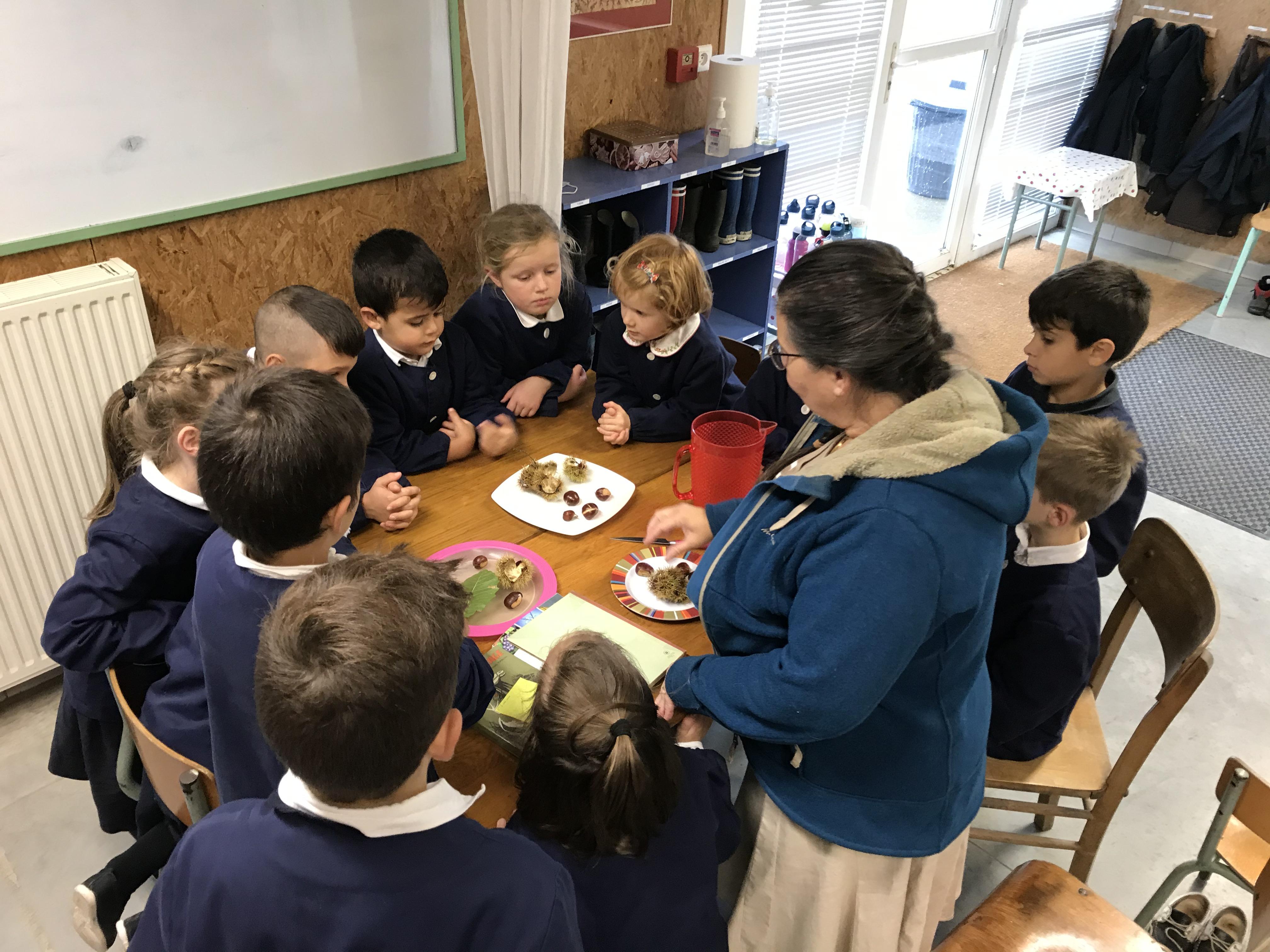 école Notre-Dame Auxiliatrice
