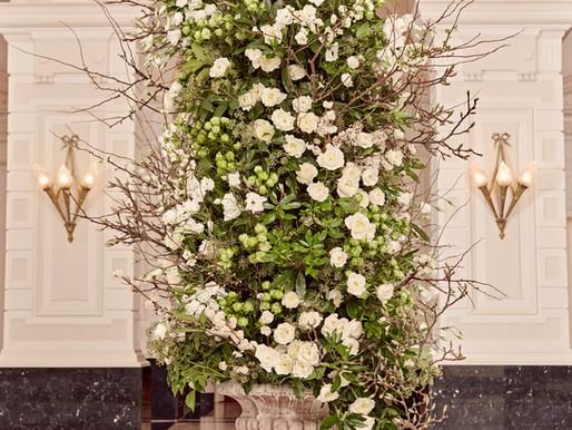Announcing the 2021 Garden Rose Design Contest Winners