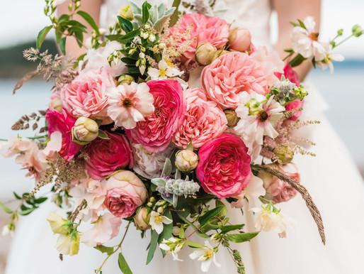 Show Us Your Best Designs! Third Annual Alexandra Farms Garden Rose Design Contest Now Open