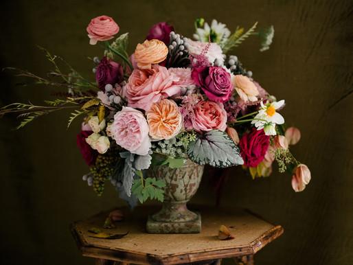 Fourth Annual Alexandra Farms Garden Rose Design Contest Now Open