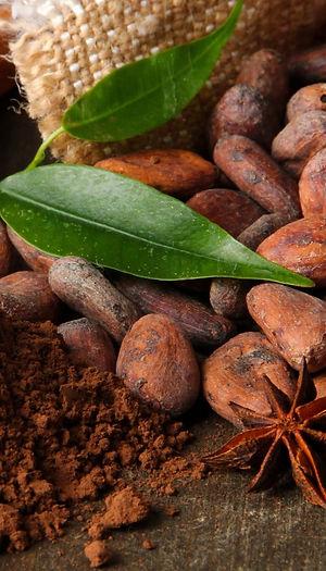 Cacao-c16a4ec0-9ff5-4f6c-bc8f-72cf01bc85
