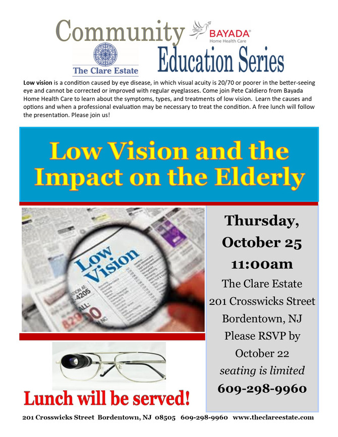 Low Vision and the Impact on the Elderly