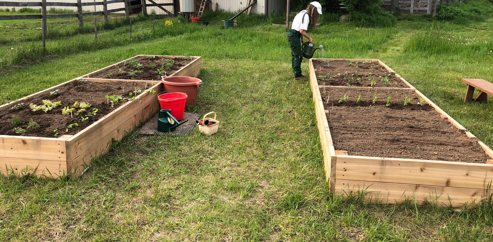 Two 4' x 16' Raised Beds