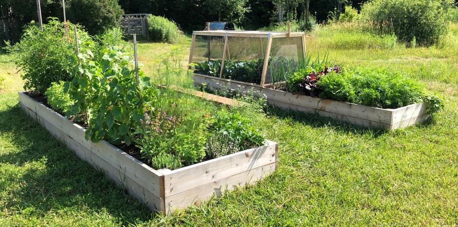 Garden in production